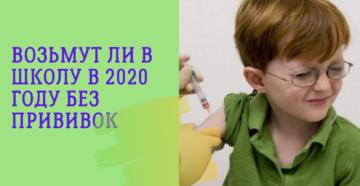 возьмут в школу без прививок